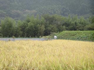 2011-09-22-002.jpg