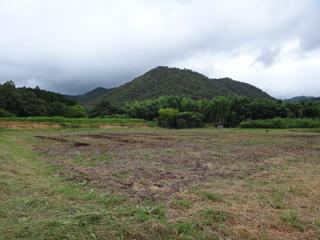 2011-09-27-004.jpg