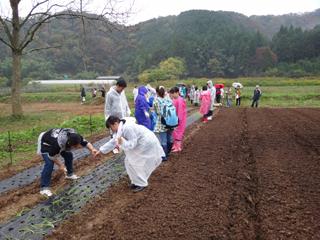 2011-11-09-001.jpg